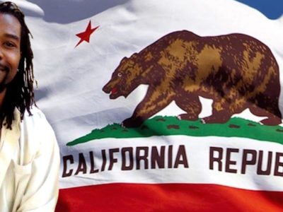 "Governor Wildstar will be the ""no-nonsense"" leader Californians have been waiting for.(Credits: PanAm Post)"