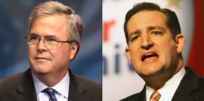 featured-bush-cruz