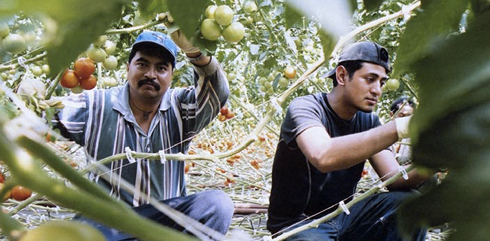 featured-migrant-workers