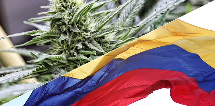 If Colombia were to legalize marijuana, it would boost tourism, local industry, exports to the largest consumer market in the world.