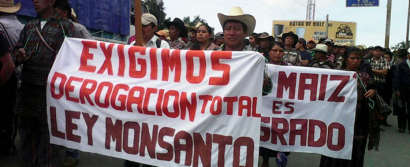 ft-guatemala-monsanto1