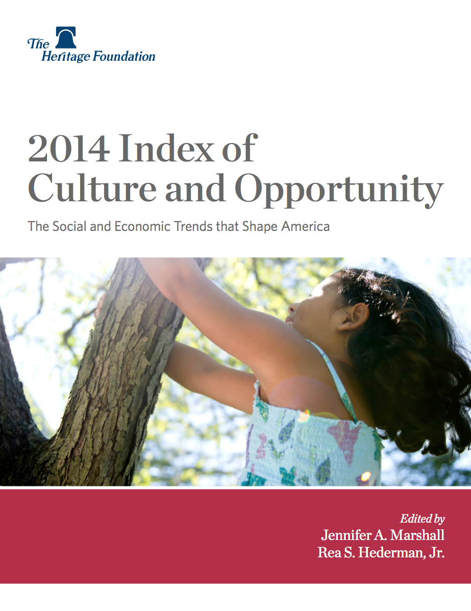 2014 Index of Culture and Opportunity