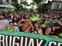 Marijuana legalization in Uruguay