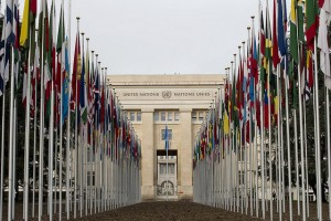 The United Nations has voted to appoint a special investigator that will look into violations of privacy globally.